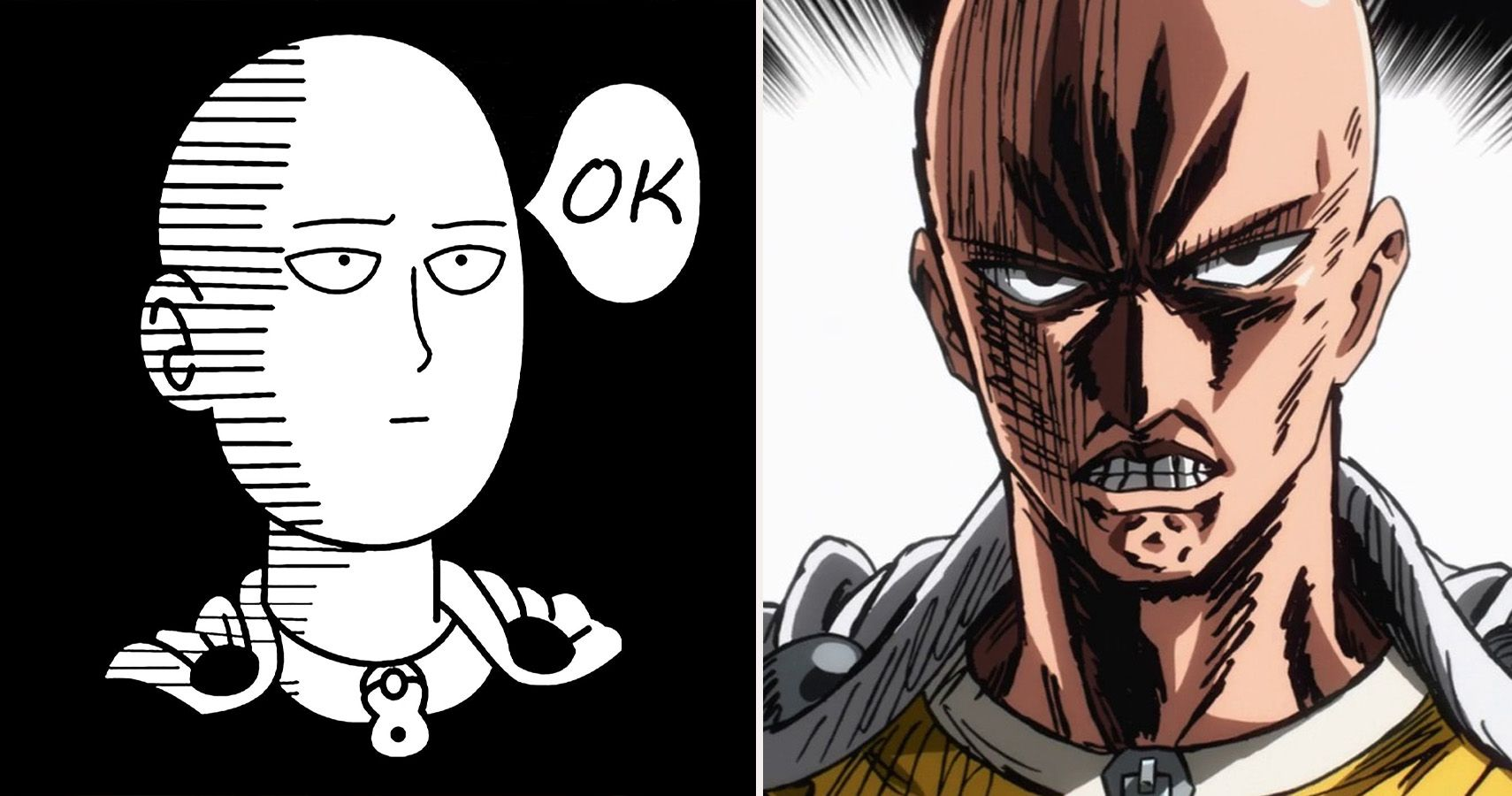 10 Hilarious One-Punch Man Memes Only True Fans Understand | CBR