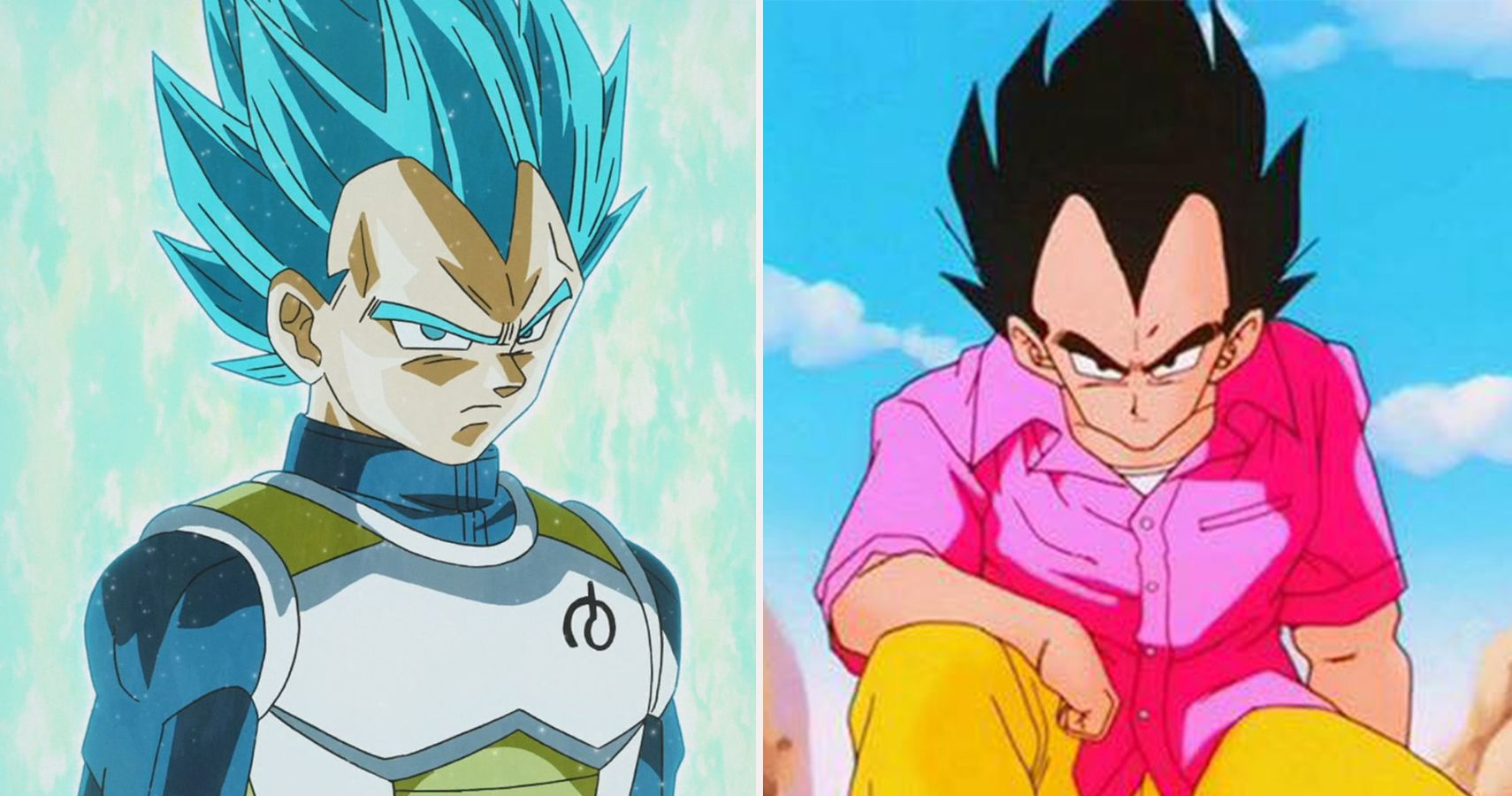 Dragon Ball Z Vegeta S Armors From Worst To Best Ranked Cbr The armour is damn awful. dragon ball z vegeta s armors from