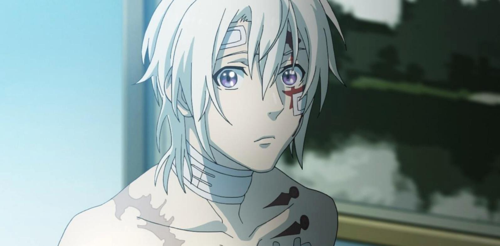 O que aconteceu com o anime D.Gray-Man? 2