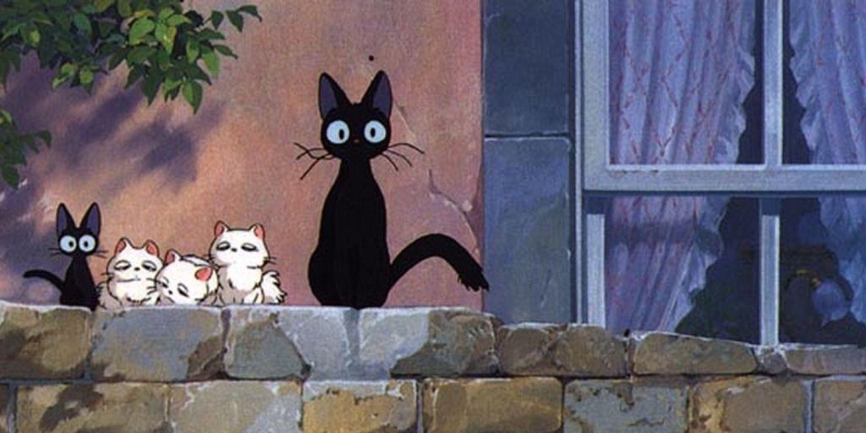 10 Fan Favorite Anime Cats Cbr