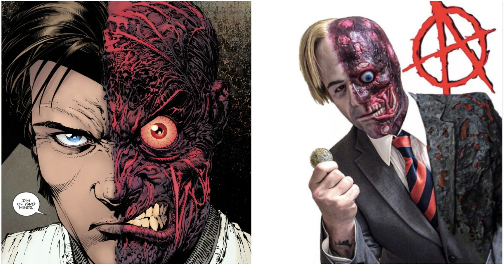 Two Face Cosplay Every Batman