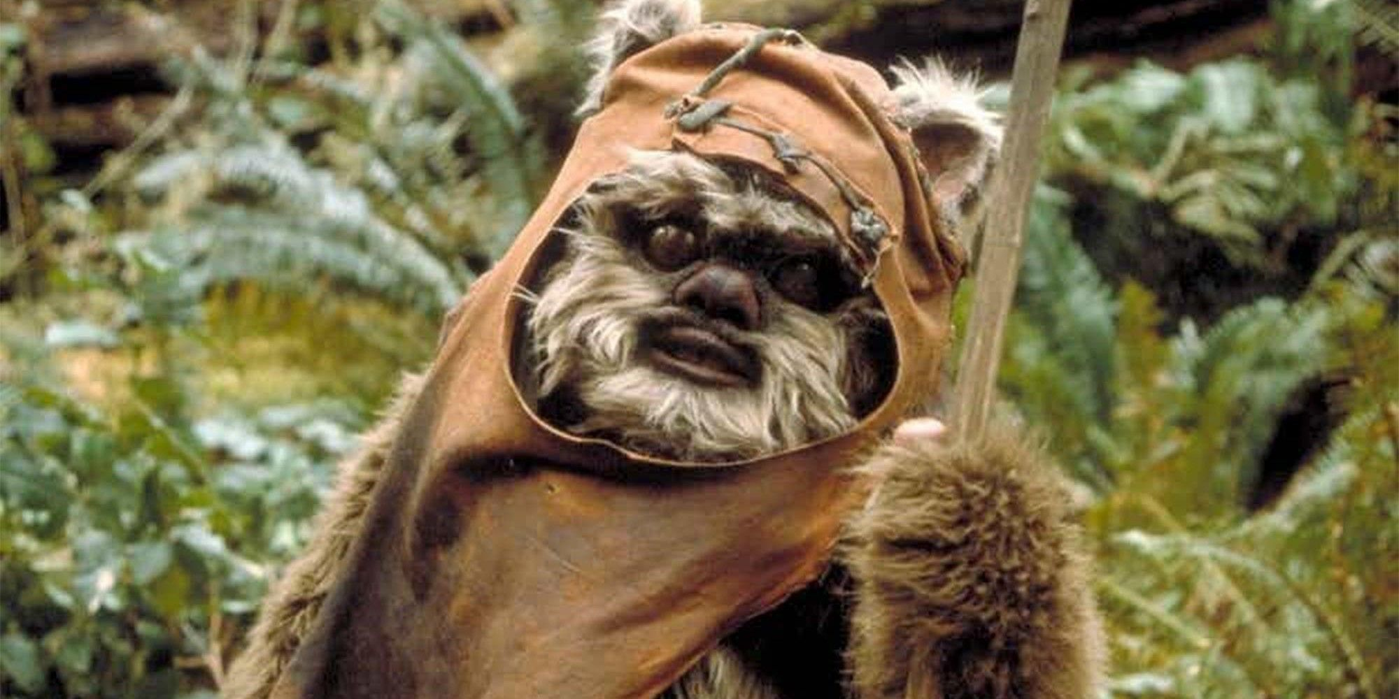 Star Wars' Forgotten Jedi Ewok Did Exist - But There's a Problem