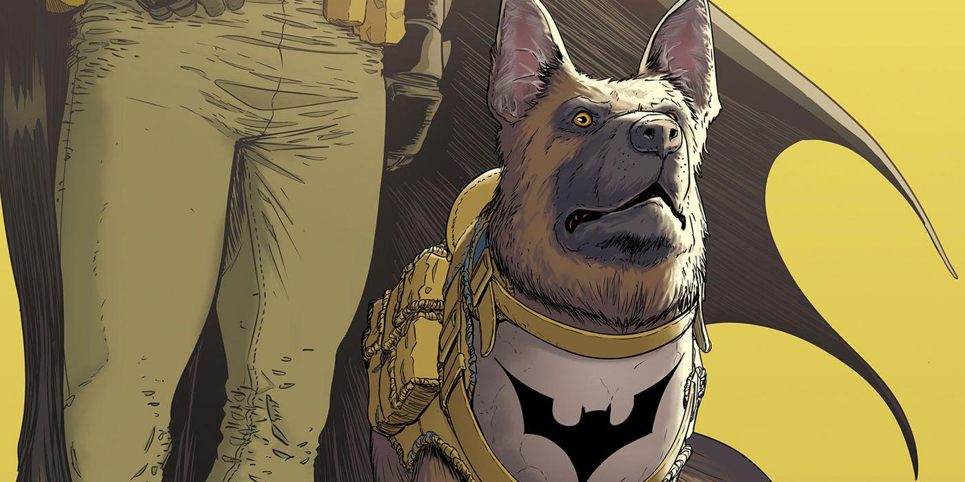 Batman's Goodest Boy, Ace the Bat-Hound, Stars in His Own Story